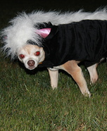 Skunk Dog Halloween Costume