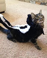 Skunk Cat Costume