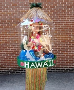 Snow Globes - New Orleans and Hawaii Homemade Costumes