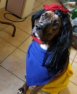 Snow White and Seven Dwarfs Puppies Homemade Costume