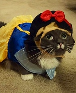 SnowWhite Cat Costume