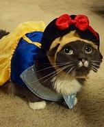 SnowWhite Cat Costume