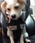 Creative costume ideas for dogs: SOA Jax Dog Costume