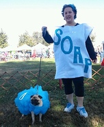 Costume ideas for pets and their owners: Soap and Loofah Costume