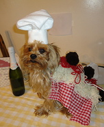 Creative costume ideas for dogs: Spaghetti and Meatballs Dog Costume