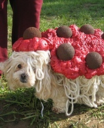 Spaghetti and Meatballs Costume for Dogs