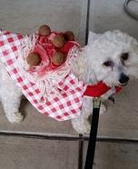 Spaghetti and Meatballs Dog Costume