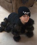 Homemade Spider Costume
