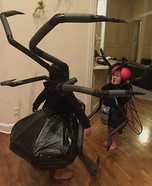 Spider & Fly Homemade Costume