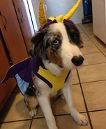Spyro the Dragon Homemade Costume