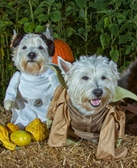 Star Wars Terriers Homemade Costumes for Dogs