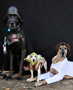 Creative costume ideas for dogs: Star Wars: The Canines Strike Back