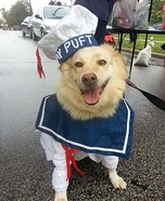 Stay Puft Dog Homemade Costume