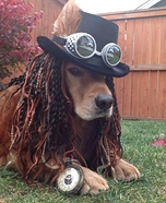 Steampunk Costume for Dogs