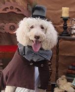 Steampunk Dog Costume