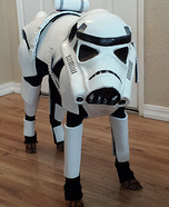 Stormtrooper Dog Homemade Costume