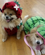 Strawberry & Watermelon Dogs Costume