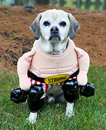 Strong Man Dog Costume