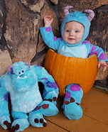 Sulley and Sulley Costume