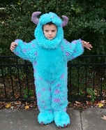 Sullivan from Monster Inc Costume