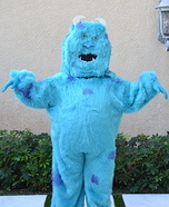 Homemade Sully Costume