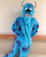Sully from Monsters Inc. Homemade Costume
