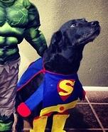 Super Dog Homemade Costume