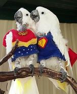 Super Parrot and Wonder Bird Homemade Costume