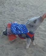 Super Pig Costume