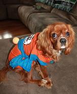 Super Saiyan Goku Dog Homemade Costume