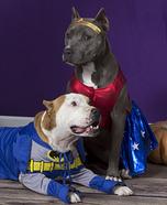 Superdog Heroes Costumes