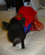 Superwoman Pig Costume