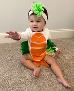 Sushi Roll Baby Homemade Costume