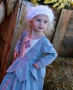 Swan Princess Homemade Costume