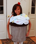 Homemade Sweet Cupcake costume