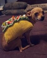 Chihuahua Taco Costume