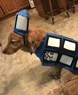Tardis Dog Homemade Costume
