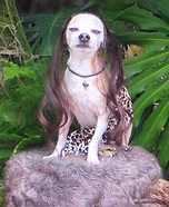Tarzan Dog Homemade Costume