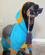 Teenage Mutant Ninja Turtle Dog Homemade Costume