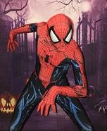The Amazing Spider-Man Homemade Costume