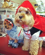 The Big Bad Wolf and Little Red Riding Hood Costumes for Dogs
