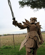 The Cardboard Warrior Costume