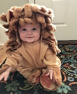 The Cutest Cowardly Lion Costume