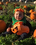 The Cutest Pumpkin in the Patch Costume