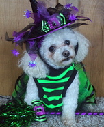 The Good Witch Dog Costume