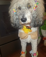 The Island Girl Dog Homemade Costume