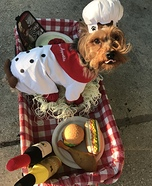 The Next Food Muttwork Star Homemade Costume
