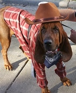 The Outlaw Dog Homemade Costume