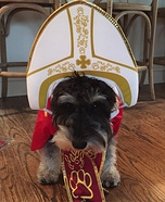 The Pope of Pups Costume