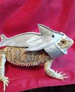 The Shark Lizard Homemade Costume